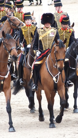Royal horse artillery , Trooping the Color, Coldstream Guards, London 2012