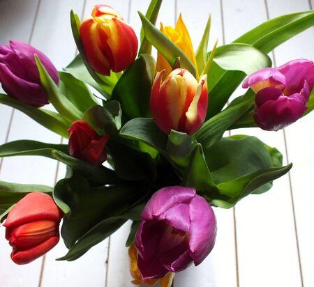 floorboards: Ramo de tulipanes de varios colores en blanco tablas de madera pintadas Foto de archivo