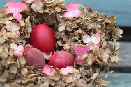Shabby Chic Easter Nest - dyed red eggs in a nest of dried hydrangea flowers, on a vintage bench photo