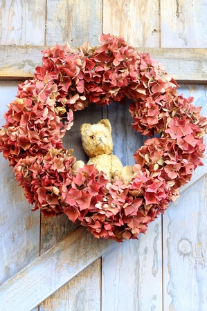 An autumn wreath of faded hydrangea flowers with a vintage teddy bear  hanging on a blue, rough painted wooden barn door, a rustic, shabby chic image photo