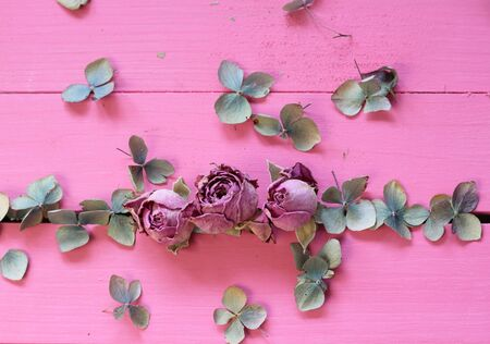 floorboards: Dried pink rose buds and pale dried hydrangea petals in a row on pastel pink painted wooden floorboards