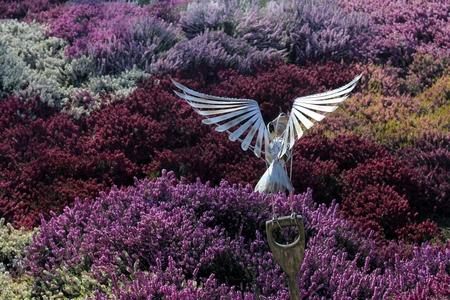 HARROGATE YORKSHIRE 25 mars 2017. sculpture hibou métal parmi champ de bruyères dans les jardins RHS Harlow Carr sur une chaude journée de printemps Banque d'images - 75600087