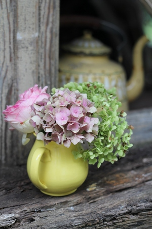 chic: French shabby chic still life, a yellow jug of pink and green hydrangea and roses, on an old wooden window sill, a vintage tin coffee pot in the background