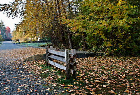 Public park entrance with wooden fence section surrounded by fallen leaves and forest in fall colors Banco de Imagens