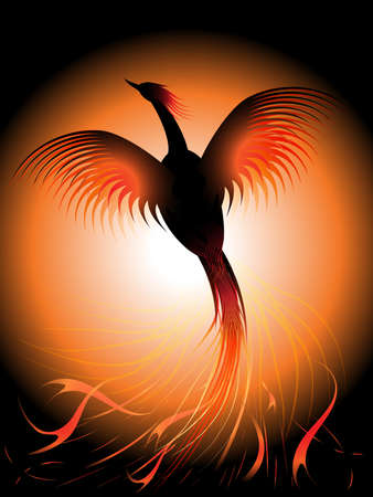 fenice: Illustrazione vettoriale di una fenice volante, risuscitata dal fuoco
