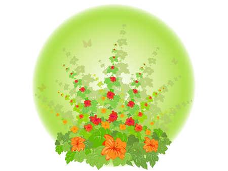 Flowering Shrub Illustration