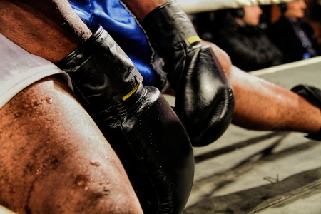 Boxing gloves during a professional boxing match photo