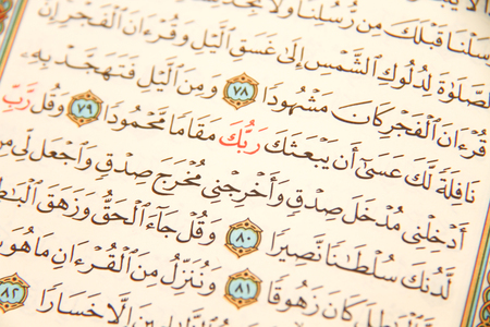 profit celebration: Photo of the Reading The holy Quran