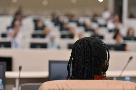 Business woman speaking at Conference. Audience at the conference room or hall