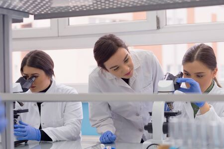 Gruppe von Laborwissenschaftlern, die im Labor mit Reagenzgläsern, Test oder Forschung im klinischen Labor arbeiten. Wissenschaft, Chemie, Biologie, Medizin und Menschenkonzept.