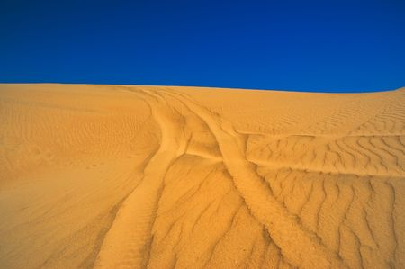 Tracks in a sand dune in Patagonia, Argentina. photo