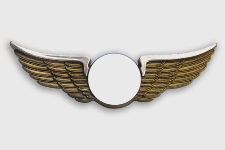 airline uniform: Golden wings pin, on white background