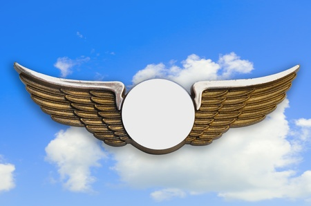 Golden wings pin, with sky in background, clipping path added.