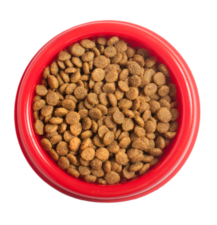 Cat food in bowl isolated on white, clipping path.