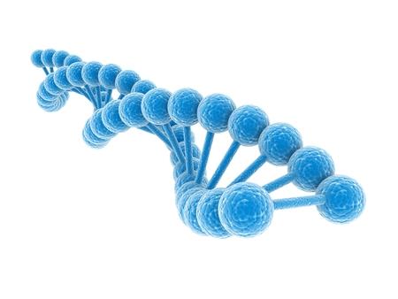 3d DNA model on white background.