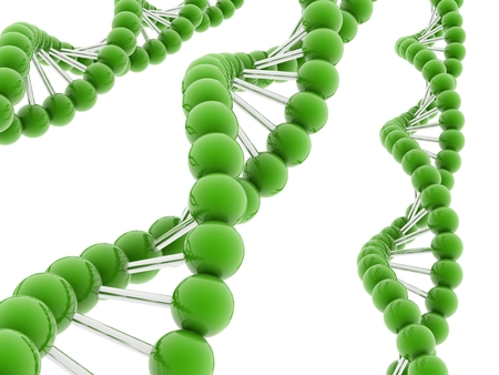 3d DNA model on white background. photo