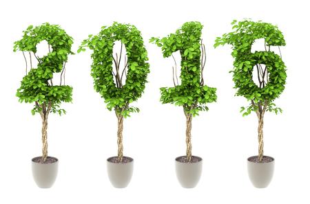 nummer 2016 samengesteld door struik plant in pot cultuur op een witte achtergrond Stockfoto