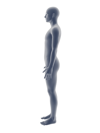 facial features: gray 3D male full-length picture on white background.