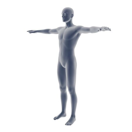 coarse: gray male body model isolated on  background. Stock Photo