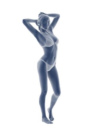 woman body illustration isolated on white background. Stock Photo