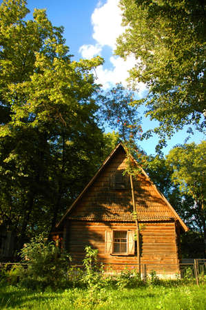 Wooden house in the forest in summer photo