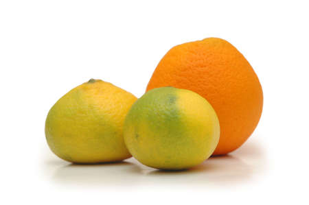 Orange and two tangerines isolated on white Stock Photo - 552517