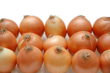 nutriments: Onions arranged in rows isolated on white Stock Photo