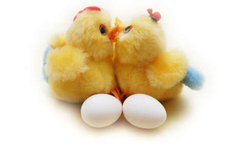 Two chicken and two eggs