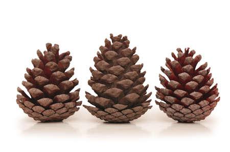 Three pine cones isolated on white background Stock Photo - 628589