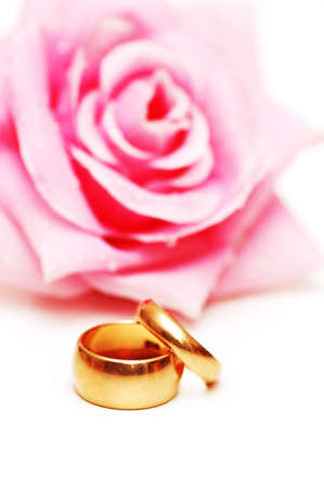 Two wedding rings and pink rose at the background photo