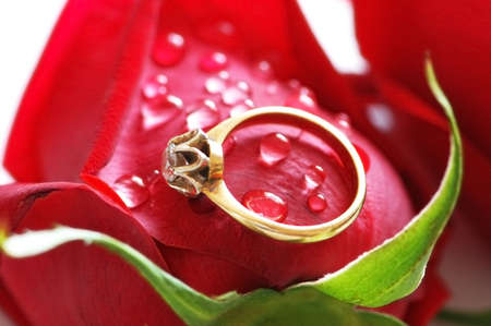 Wedding ring with brilliant  on the red rose photo
