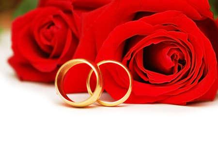 anillos de boda: Dos anillos de boda y rosas rojas aisladas en blanco  Foto de archivo