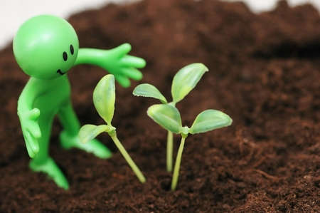 cultivated land: Gardening concept - Smilie looking  after green seedlings