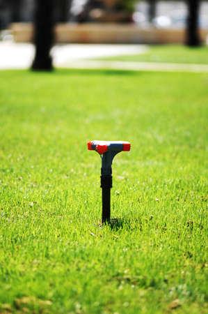 Water sprinkler on the  green grass lawn Stock Photo - 946280