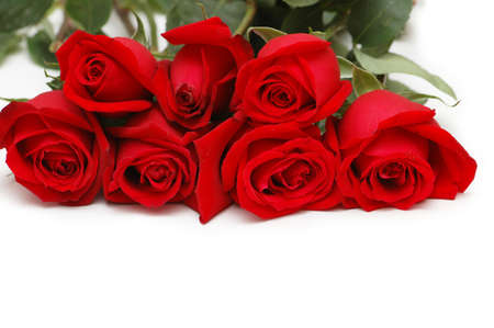 Bunch of red roses isolated  on white photo