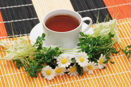 Cup of tea with herbs and daisies photo