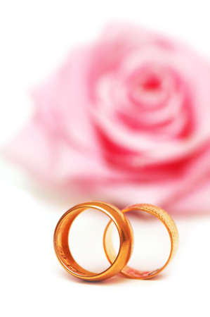 Two wedding rings and pink rose at the background Stock Photo - 1215614