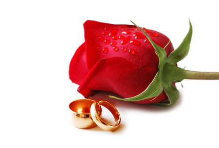 Two golden wedding rings and a red rose photo