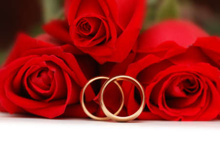 Two gold wedding rings  and red roses photo