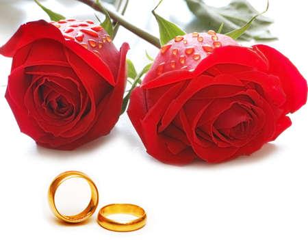 anillo de boda: Boda concepto con rosas y anillos  Foto de archivo
