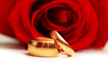 Wedding concept with roses and two rings Stock Photo - 2528247