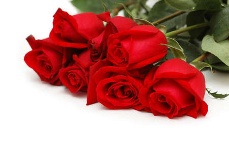 Red roses isolated on the white background photo