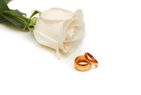 White rose and wedding rings isolated on white Stock Photo - 2677309