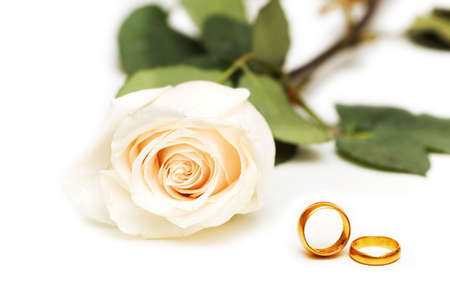 rose ring: Rose and wedding rings isolated on the white
