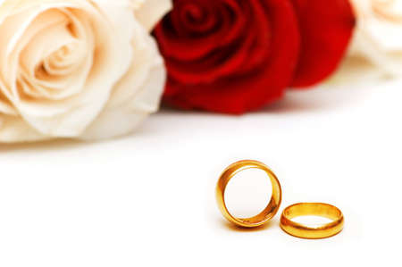 Rose and wedding rings isolated on the white photo
