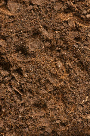 Close up of soil - can be used as background Stock Photo - 3368965