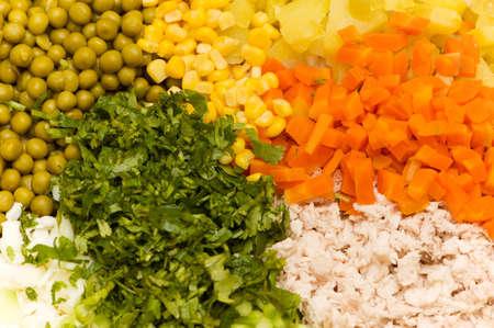 ingridients: Various  colourful ingridients prepared for salad