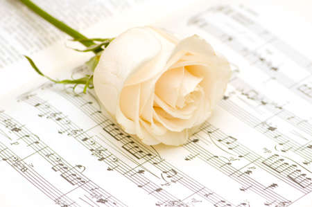 White rose on the musical notes page Stock Photo - 3557999