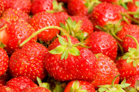 Lots of strawberries arranged as the background Stock Photo - 3692268