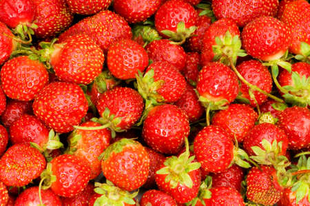 Lots of strawberries arranged as the background Stock Photo - 3733317